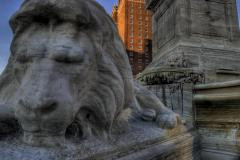 buffalo-city-hall-lions-hdr_2576248403_o