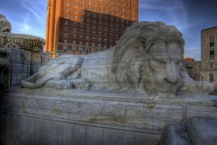 buffalo-city-hall-lions-hdr_3111257791_o